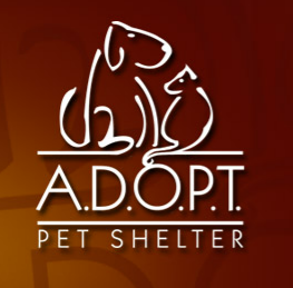 A.D.O.P.T Blessed Bonds Pet Shelter